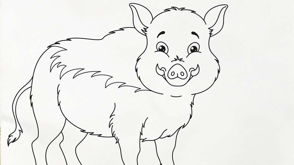 male dein wildschwein aus  minispick